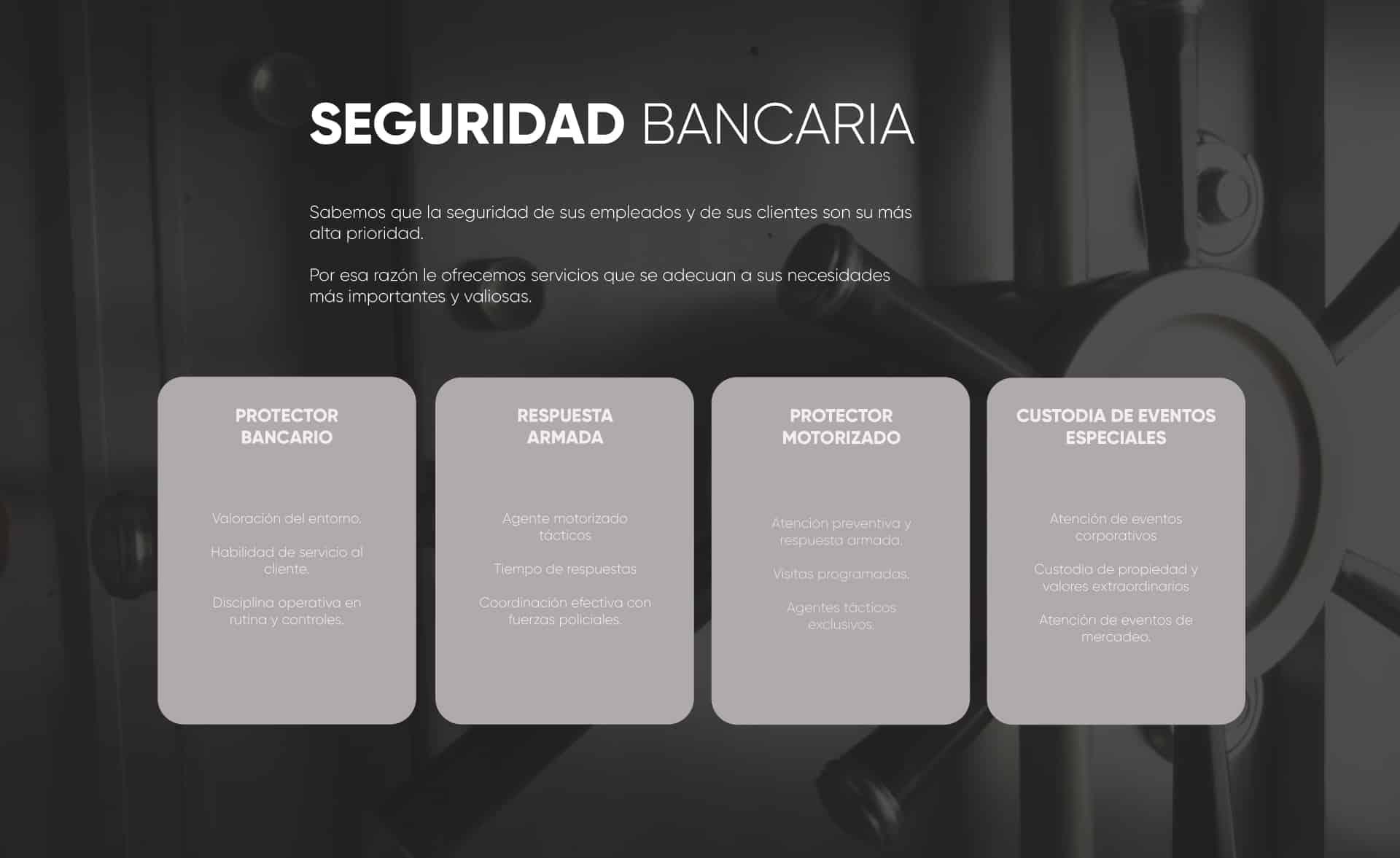 carrousel-servicios3